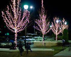 Festoon Lights, Tree Lighting, Chandelier, Ceiling Lights, Home Decor, Candelabra, Decoration Home, Room Decor, Chandeliers