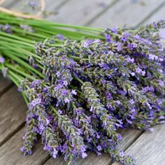 Lavender Fragrance Oil candle making supplies for lavender candles on each table-they keep away mosquito and the smell relaxes you