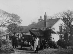 Mayhill Farm, Swansea, pre before the council estate was built. Swansea, Council Estate, Cymru, English Countryside, Back In The Day, Northern Ireland, Small Dogs, Wales, United Kingdom