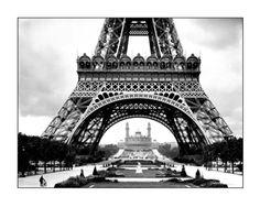 Wieża Eiffela i plac Trocadero - Roger Viollet_50x40