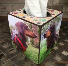 Personalized dog Custom Tissue Box Holder with your photo's created by Blocks From The Heart