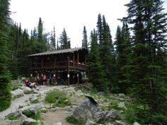 Plain of Six Teahouse, Banff CNP