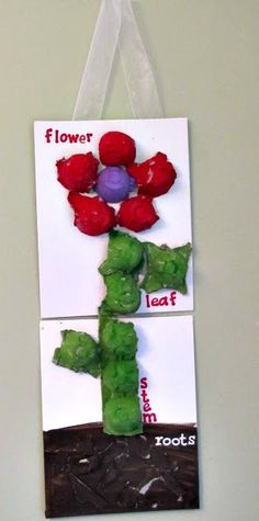 Easy Egg Carton Crafts for Kids - Sassy Dealz