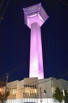 乳がん啓発でピンク色にライトアップされた五稜郭タワー=1日夜、北海道函館市