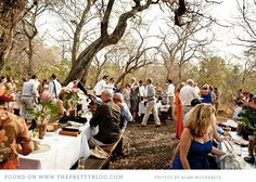 New Wedding Venues South Africa Mpumalanga Ideas Candle Wedding Centerpieces, Wedding Reception Decorations, Wedding Venues, Destination Wedding, Wedding Ideas, Wedding Day Quotes, Wedding Stuff, South Africa Honeymoon, Safari Wedding