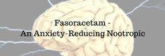 Fasoracetam - An Anxiety-Reducing Nootropic - http://nootropicszone.com/fasoracetam-anxiety-reducing-nootropic/