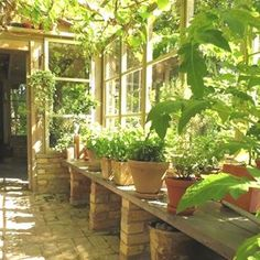 47 Awesome Garden Shed Design Ideas is part of Greenhouse gardening - As you're at it, eliminate tools you haven't utilized in years The designing can be done according to your requirements […] Greenhouse Shed, Greenhouse Gardening, Greenhouse Benches, Simple Greenhouse, Potting Benches, Small Glass Greenhouse, Greenhouse Attached To House, Portable Greenhouse, Indoor Greenhouse