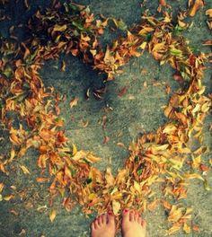 autumn,fall