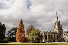 An amazing Ashridge House wedding: Katie and Grant's countryside nuptials blog is full of perfect wedding inspiration.