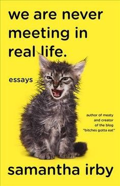 we-are-never-meeting-in-real-life-essays.jpg (280×432)