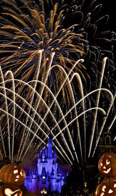 Walt Disney World fireworks! Disney World Halloween, Disneyland Halloween, Walt Disney World, Disney World Fireworks, Disney Parks, Scary Halloween, Disney Disney, Halloween Party, Disney Princess