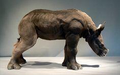 mazumba - white rhino - raku sculpture | Flickr - Photo Sharing! Leslie D McKenzie