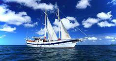 The Diamant of Island Windjammers Cruises.