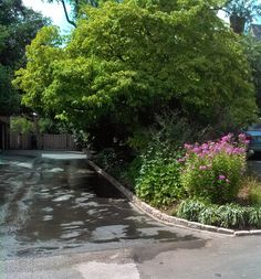 Created a paver border to separate the garden from the driveway, both visually and physically. This border will stand up to wear and tear from vehicles, not just people! Separate, Sidewalk, Landscape, Vehicles, Garden, Outdoor Decor, People, Projects, Country House Exteriors