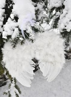 ...imagine the sweetest little angel carefully placing her wings aside to make angels in the snow.