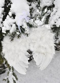 Angel wings in the snow   ♥
