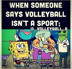 Sport memes volleyball people 27 New ideas - Funny Sports - - Sport memes volleyball people 27 New ideas The post Sport memes volleyball people 27 New ideas appeared first on Gag Dad. Volleyball Jokes, Volleyball Problems, Volleyball Motivation, Volleyball Drills, Volleyball Players, Volleyball Sayings, Softball, Beach Volleyball, Volleyball Bedroom