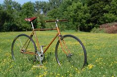 1984 Sears Robuck - turned retro fixie!