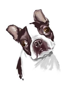 Boston Terrier Print by Rubenecker on Etsy