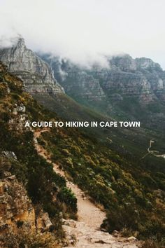 Cape Town is the ultimate hiking paradise. Boasting an incredible variety of beautiful and thrilling hiking trails, ranging from beginner to advanced, there is something for every avid hiker at heart. Even if you've never hiked a day in your life, Cape Town's thriving hiking scene welcomes you with open arms. However, before you embark on your ultimate Cape Town hiking adventure, it is important to be fully prepared for what lies ahead. Stuff To Do, Things To Do, Table Mountain, Open Arms, Hiking Trails, Cape Town, Paradise, Scene, The Incredibles