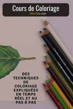 Learn to color like a real artist. Learn the Coloring Techniques . Pastel Crayons, Color Schemes Colour Palettes, Paper Drawing, Prismacolor, Derwent Inktense, Leaf Coloring, Colouring Techniques, Art File, Types Of Art