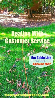 Oh No We Cut The Cable - Customer Service Rant - The Hypertufa Gardener