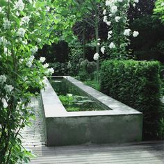 Popular Minimalist Fish Pond Design Ideas You Should Try Pond Landscaping, Ponds Backyard, Garden Pool, Water Garden, Backyard Waterfalls, Tropical Landscaping, White Gardens, Small Gardens, Outdoor Gardens