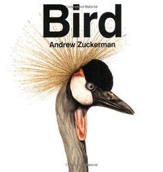 Bird, Andrew Zuckerman