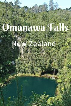 Love stumbling across hidden gems? Then you'll adore Omanawa Falls in New Zealand's Bay of Plenty. Click through to see more photos and directions!