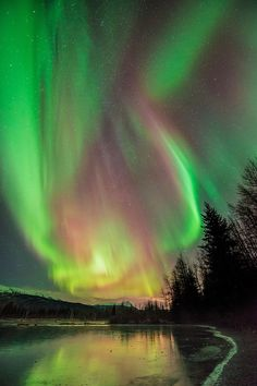 Aurora borealis display over Portage Valley, Chugach National Forest, Alaska, in early November.