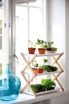 Kekkila's new line of tiered stepladder plant stands via Gardenista