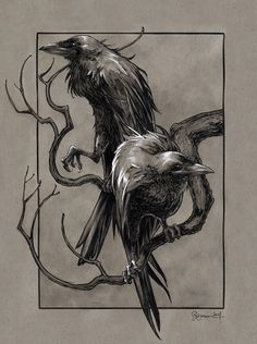 Huginn & Muninn from the Poetic Edda(Norse Mythology) by Daniel Govar - #INKtober day 5