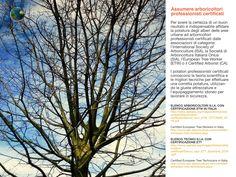 Assumere arboricoltori professionisti certificati
