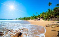sea, tropical island, the Caribbean islands, beach, sand, palm trees, Caribbean