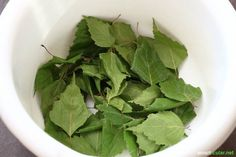 Birch leaves as a salt substitute for a reduced salt diet - Most of us eat too much salt, but consciously doing without it is often difficult. Birch leaves are - Organic Farming, Organic Gardening, Apple Cider Vinegar Diet, Easy Plants To Grow, Edible Wild Plants, Herb Garden Design, Design Jardin, Tomato Garden, Herbs Garden