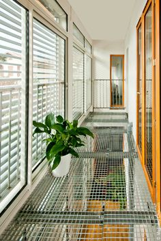 vue sur le premier étage de la serre bioclimatique donnant sur le mur trombe et la pièce de vie. Sol en caillebotis métallique.