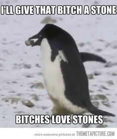 Its funny cause in the panguin world its true.