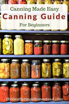 Beginners Guide to Canning. How to can guide to make home canning simple. Beginners Guide to Canning. How to can guide to make home canning simple. Easy Canning, Canning Tips, Canning Vegetables, Canning Tomatoes, Veggies, Regrow Vegetables, Canning Food Preservation, Preserving Food, Home Canning Recipes