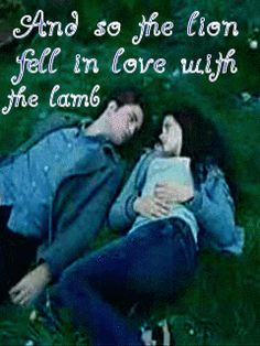 """""""And so the lion fell in love with the lamb"""" - Edward Cullen """"What a stupid lamb"""" - Bella Swan"""