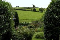 Countryside views from Somerset cottage
