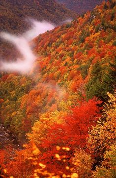 https://www.echopaul.com/ #seasons West Virginia Department of Commerce Fall foliage