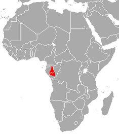 Forest horseshoe bat - Wikipedia