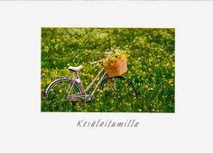Polkupyörät ja pyöräily - 106951943635258866150 - Picasa-verkkoalbumit.  Kuultokuva,  painettu Ranskassa.