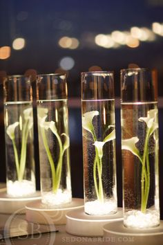 Submerged calla lillies