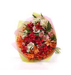 Alstroemeria Grower Bouquet - £27.99