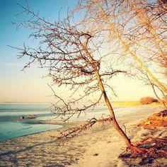 Winter im Hinterland