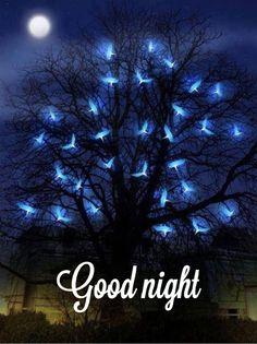 Goddess of the Night Sky & Moon. Bonne nuit et Bisous.