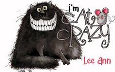 Cat Crazy!!