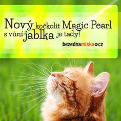 Nový kočkolit Magic Pearl apple je tady! Jen na Bezedné misce ;)