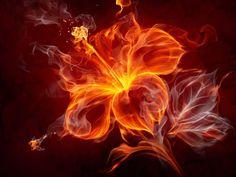 Здесь радости движение, здесь огненный поток, Здесь истины исток, здесь колыбель любви. Проникни сердцем под покров огня,чтобы понять что кроится за ним Люби всем существом твоим, люби Творца и чел…